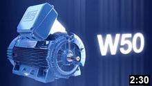 Низковольтные и высоковольтные электродвигатели серии W50
